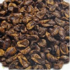 Куколка шелкопряда (50гр)
